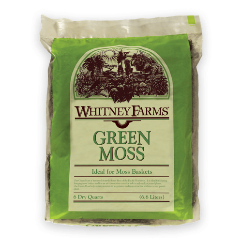 WHITNEY-FARMS_green-moss